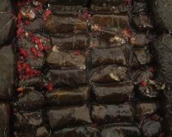 DOLMADES MARINATED (GD) -  2KG TRAY