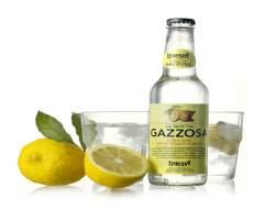 GAZZOSA (LURISIA) 24 X 275ML